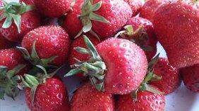 Bild mit Erdbeeren